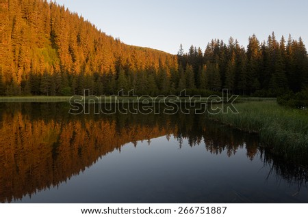 Lake in the mountain forest. Beautiful morning light - stock photo