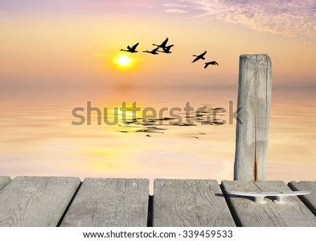 lake in the sunrise - stock photo