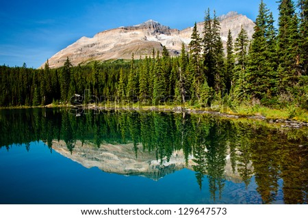 Lake reflection in the Forgotten Plateau, Vancouver Island, Canada. - stock photo