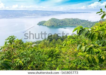 lake toba, indonesia from coffee farm - stock photo
