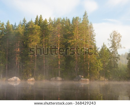 Lakeside forest at morning fog - stock photo
