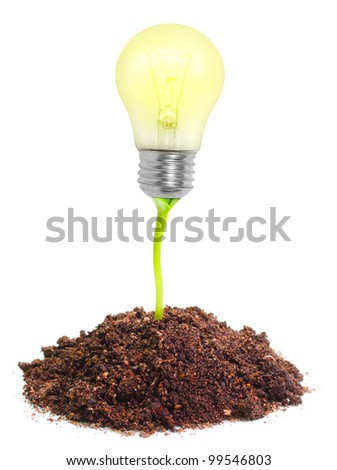 Lamp bulb groving in a soil. New idea concept. - stock photo