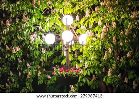 Lamppost with flower bed and chestnut leaves at night - stock photo
