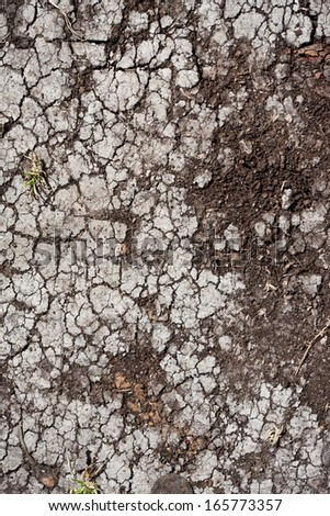 Land with dry cracked ground texture background - stock photo