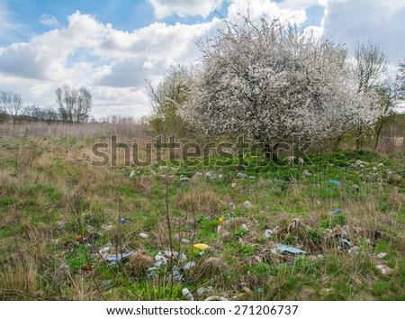 Landfill and tree - stock photo