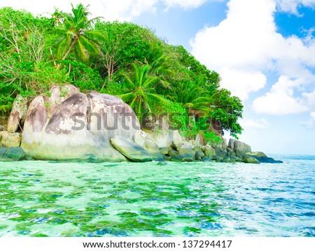 Landscape Bay Jungle - stock photo