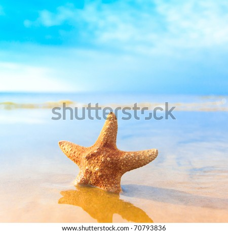 Landscape Beach Fish - stock photo