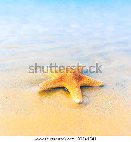 Landscape Beach Sea - stock photo