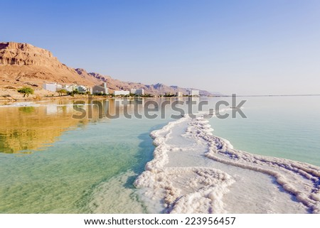 Landscape Dead Sea coastline in summer day - stock photo