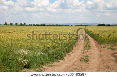 Landscape farmland with wheat, wild flowers and dirt road with dramatic sky - stock photo