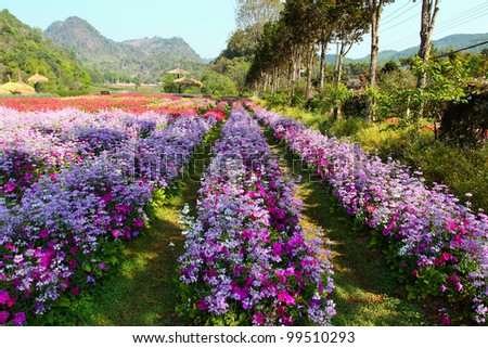 Landscape flower background . - stock photo