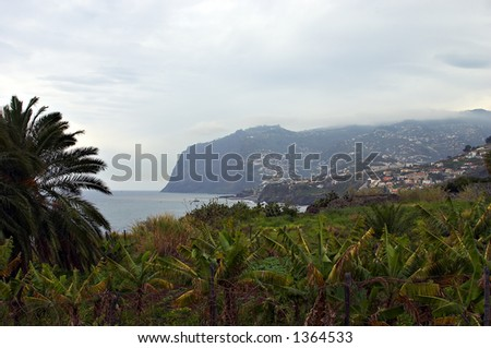Landscape from Madeira, Portugal - stock photo