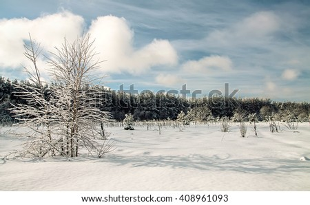 Landscape.frozen snowy winter forest, field trees before the storm. Horizontal - stock photo
