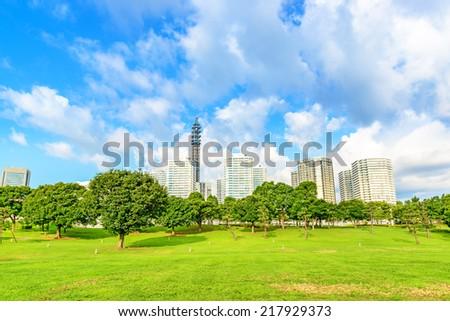 Landscape grass prospects the Yokohama Minato Mirai 21 City buildings of landmark. - stock photo