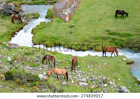 landscape in Andes.  Salkantay Trekking, Peru. - stock photo