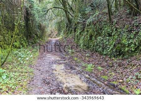 Landscape in Galicia (Spain) - stock photo