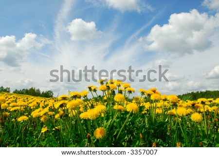 Landscape in May - stock photo