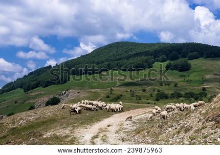 Landscape in Nimfaio village, Florina, Greece - stock photo