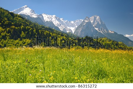 Landscape in the Bavarian Alps.  Focus on grass - stock photo
