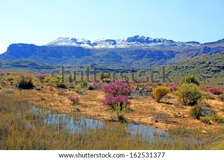 Landscape in the Cederberg, South Africa.  - stock photo