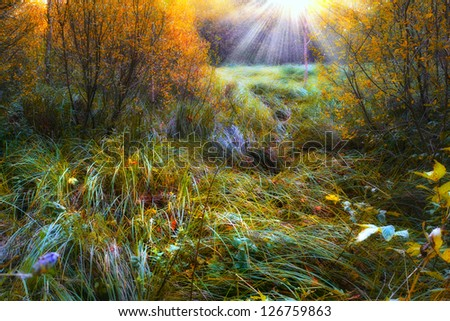 Landscape in the colors of autumn - stock photo