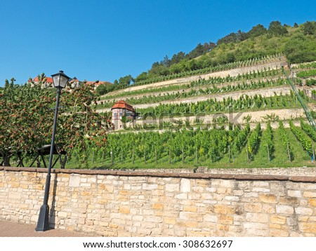 Landscape in the wine area Saale-Unstrut in Germany - stock photo