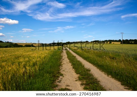 Landscape / Landscape with fields and meadows - stock photo