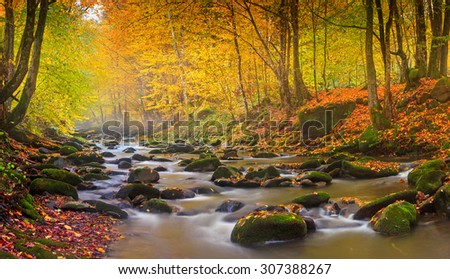 Landscape mountain river in autumn forest at sunlight. Fast jet of water at slow shutter speeds give a beautiful magic effect.   - stock photo