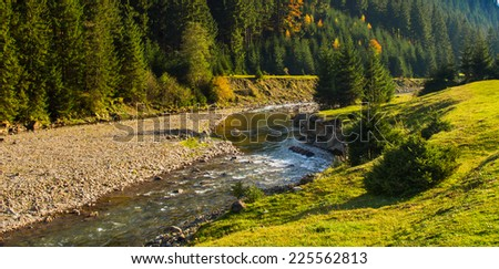 Landscape mountain river with coniferous forest  and meadow in autumn. - stock photo