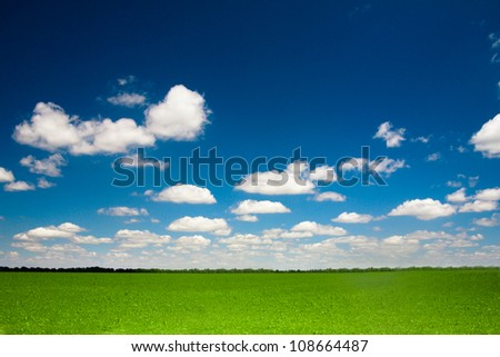Landscape Nature. The blue sky, clouds and the field - stock photo
