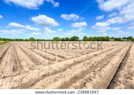 Landscape of a cultivated farmers field on a sunny day in the Netherlands - stock photo