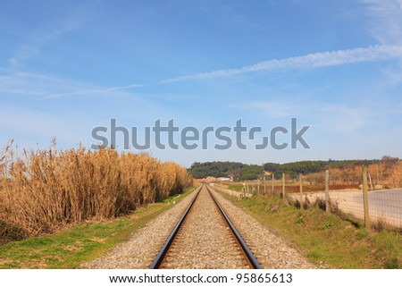 Landscape of an portuguese railway against forest and blue sky - stock photo