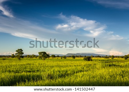 Landscape of field and beautiful clouds in countryside of Thailand - stock photo