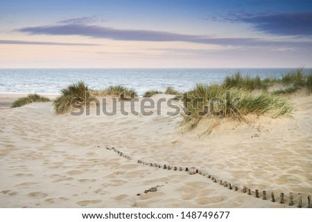 Landscape of grass in sand dunes at sunrise with wooden fences under sand dunes - stock photo