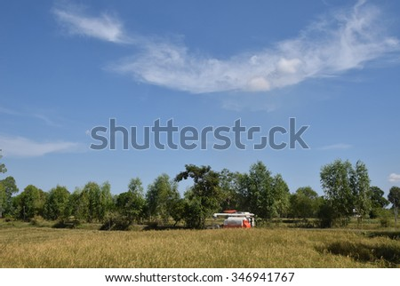 Landscape of  harvesting of  paddy rice field  with  beautiful sky at Muang District, Roi Et Province, Thailand on December 3, 2015.Selective focus at paddy rice field. Except tractor were running. - stock photo