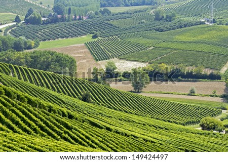 Landscape of hills with vineyards in Italy - stock photo