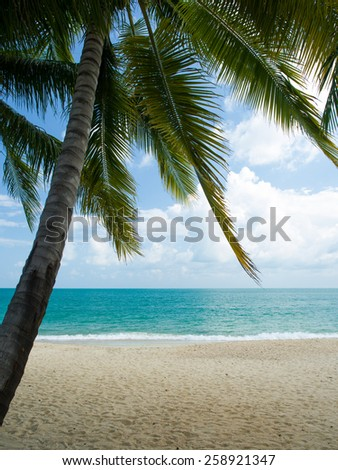 Landscape of Koh Samui island in Thailand - stock photo