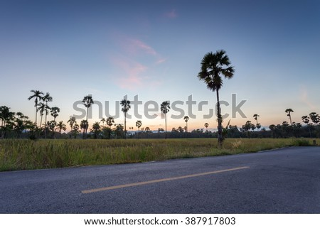 landscape of road and green paddy rice field at sunset - stock photo