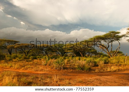 Landscape of Samburu before storm, Samburu, Kenya - stock photo