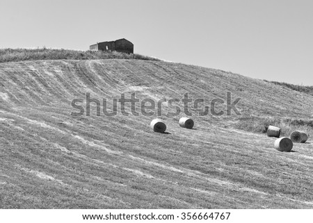 Landscape of Sicily with Many Hay Bales, Vintage Style Toned Picture - stock photo