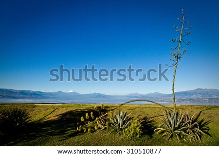 Landscape of the Ecuadorian highlands with Cotopaxi in the background, South America - stock photo