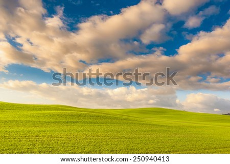 Landscape of the setting sun, green field and blue cloudy sky - stock photo