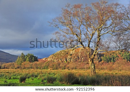 Landscape of the wilderness of Wales, Great Britian - stock photo