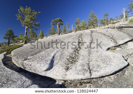 landscape of trees and rock in Yosemite National Park, California, United States - stock photo