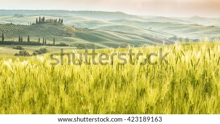 Landscape of Tuscany, hills and meadows, Toscana - Italy, Europe. - stock photo