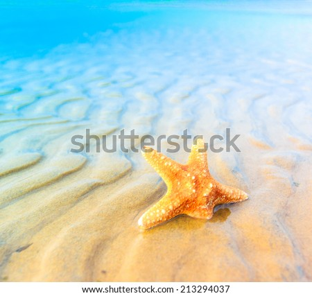 Landscape Sand Fish  - stock photo
