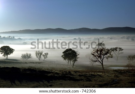 landscape shrouded in fog. - stock photo