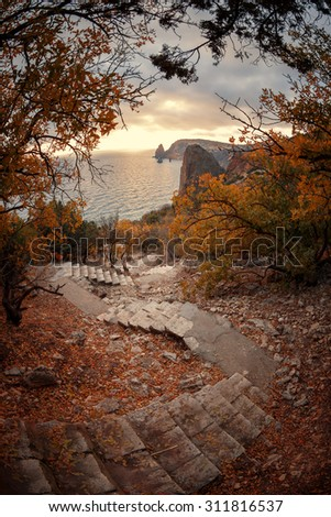 Landscape. Stairway to the sea among the autumn trees - stock photo