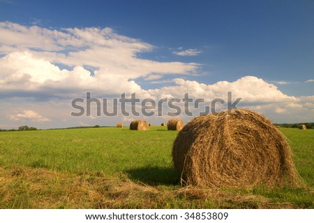 Landscape summer view of rural filed in Virginia with clouds of just bailed hay - stock photo