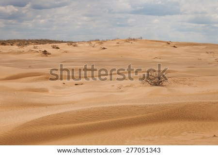 Landscape. The desert under a blue sky with clouds - stock photo